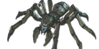 Helghan Spider