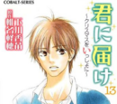 Kimi ni Todoke Light Novel Volume 13