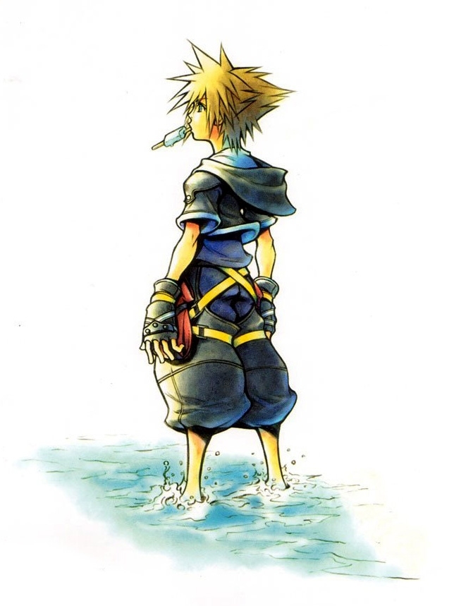 Kingdom hearts ii kingdom hearts wiki fandom powered for Miroir noir wiki