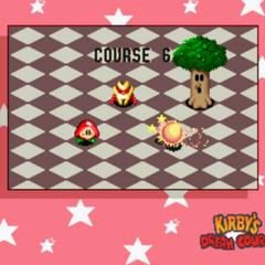 Course 6