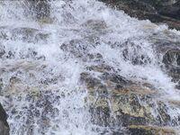 Wasser Neves.jpg