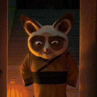 Younger Shifu