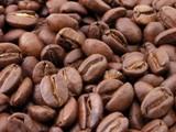 קובץ:Roasted coffee beans.jpg