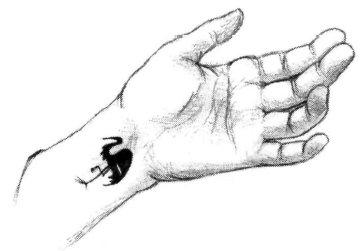 File:Daidoji tattoo.jpg