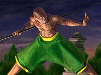 Hoshi Monk