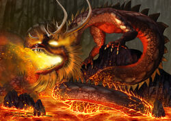 Dragon of Fire 5