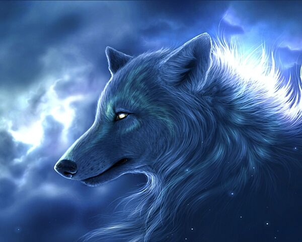 File:Arctic-Wolf-wallpaper.jpg