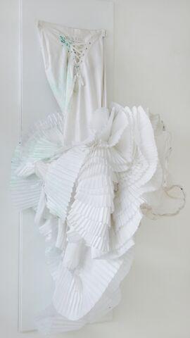 File:SHOWstudio Puke dress 001.jpg