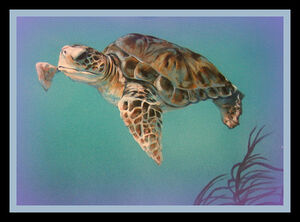 Project 366 2008 - March 6, 2008 ~ Turtle Mural ~