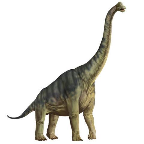 File:Karen Carr Royal Tyrrell Brachiosaurus.jpg