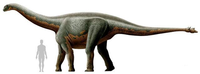 File:Shunosaurus.jpg