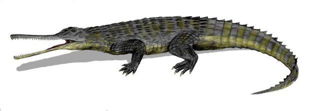 File:Rutiodon BW.jpg