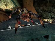 Spider Willard