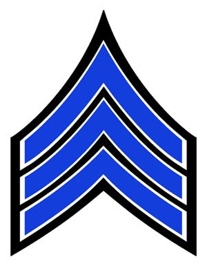 Nypd ranks