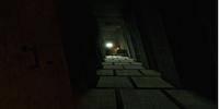 One 4 Nine/The Tomb