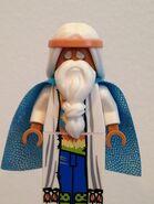 Vituvius face beard