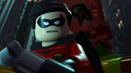 20 Robin