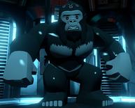 GorillaGrodd