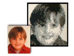 3443 LEGO Mosaic