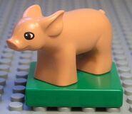 Duplo pig1