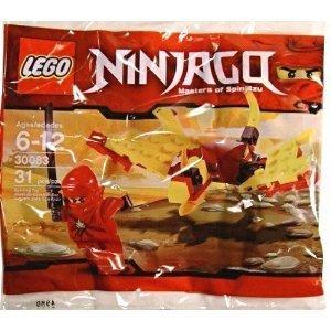 Lego Ninjago Dragon Dragon Fight