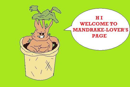 File:Mandrake2.jpg