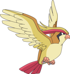 018 Pidgeot AG