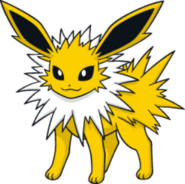 Jolteon DW