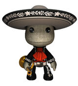 Mariachi Costume