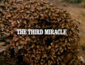 Title.thethirdmiracle