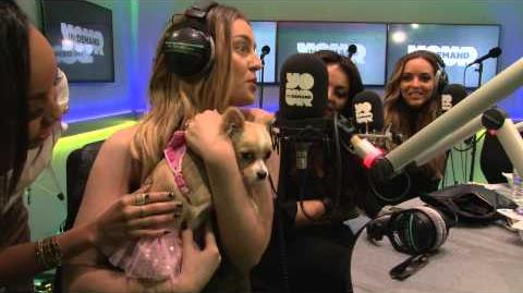 Little Mix Requests.... a puppy