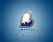 B-Channel with Inside Big City until 2009