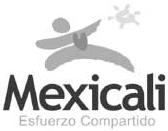 MXLI2001-2004