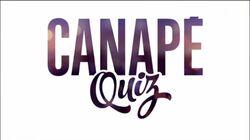 Canape Quiz alt 1