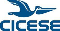 LogoCicese2009