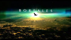 Boreales Logo