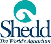 Shedd20Aquarium