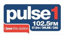 Pulse 1 2015