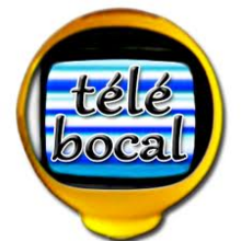 TELE BOCAL 2012