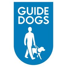 Lovely-bones-guide-dogs-charity