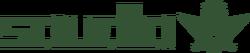 Saudia logo 1991