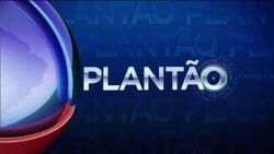 PlantaoRecord2013