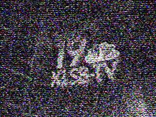 278klsb19