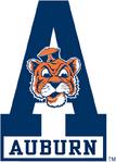 6388 auburn tigers-alternate-1968