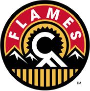 7483 calgary flames-alternate-2014