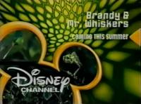 DisneyLizard2003