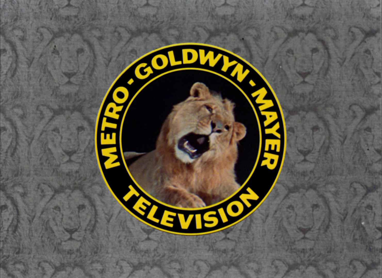 Image - MGM Television 1966.png | Logopedia | Fandom powered by Wikia