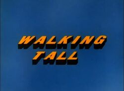 Walking Tall TV Intertitles