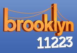 Brooklyn 11223 logo