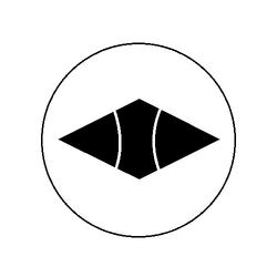 Hisamitsu 1965